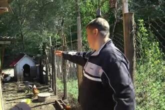 Oraşul Pucioasa, terorizat de atacurile unei ursoaice. Soluţia autorităţilor:
