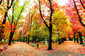 Vremea azi, 17 octombrie. Prognoza pentru București și țară - temperaturile scad peste tot