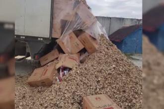 5 milioane de țigarete de contrabandă, descoperite de un câine la frontiera cu Ucraina