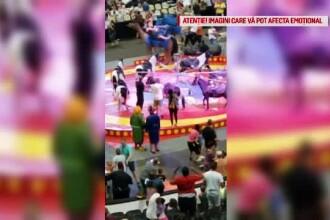Șapte persoane, printre care și copii, rănite de o cămilă speriată la circ, în SUA
