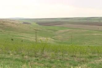 Cum au reușit agricultorii din Sălaj să obțină un sprijin financiar anual de 1 milion de euro