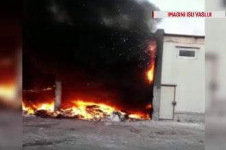 Incendiu violent la o fostă fabrică din Vaslui. Oamenii, avertizați prin RO-Alert