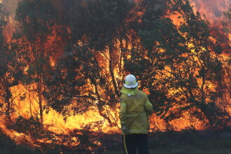 Grave incendii de vegetație în Australia. Zeci de case au fost mistuite