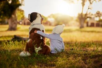 De ce este recomandat ca fiecare copil să aibă un câine lângă el. Ce spun medicii