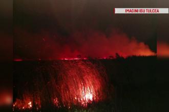 Incendiu puternic în Delta Dunării. 10 hectare de vegetaţie uscată, cuprinse de flăcări
