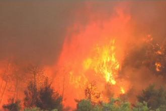 Incendii puternice pe insula Zakynthos: sute de oameni au fost evacuați