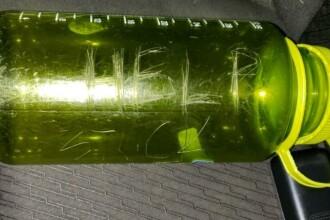 """Au găsit o sticlă pe care era scrijelit mesajul """"Ajutor"""". Ce au descoperit în interior"""