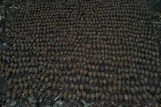 Peste 1.000 de grenade germane din Primul Război Mondial, găsite în Vrancea
