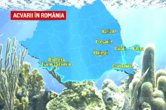 """Acvariile din România, lăsate în paragină: """"A fost grajd, a fost depozit de vinuri"""""""