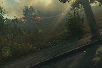 Incendiul de vegetație din București a fost stins. Traficul, reluat pe Splaiul Unirii