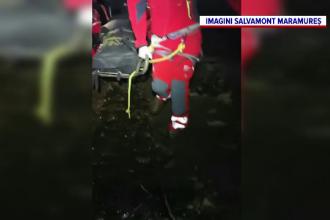 Un bărbat a murit strivit de un copac, în Maramureș. S-a speriat și a sărit din excavator