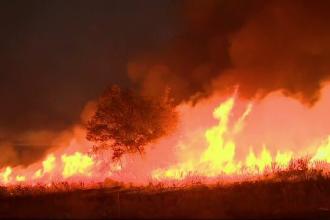 Un bărbat care nu și-a recunoscut soția desfigurată de foc și-a găsit apoi fiul omorât de incendiul din California