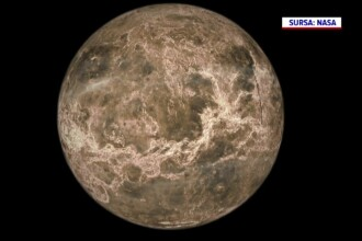 Ce forme de viaţă ar putea exista pe Venus.