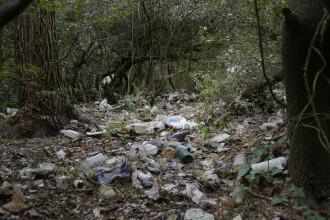"""""""Gropi de gunoi"""" în pădurile de la marginea localităţilor. Ce amendă pot primi cei care aruncă deșeuri"""