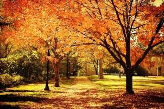Vremea azi, 21 octombrie. Temperaturile maxime trec de 20 de grade Celsius
