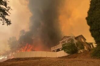 Scene apocaliptice în California. Faimoasa rezervație cu arbori sequoia arde neîncetat de două săptămâni