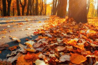 Vremea azi, 19 octombrie. Temperaturi calde în sudul țării