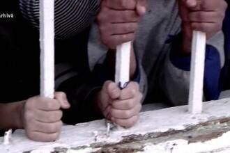 Cum au ajuns zeci de români, printre care și copii, sclavi în Marea Britanie. Victimele au fost exploatate timp de trei ani