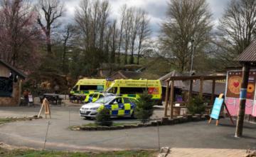Tragedie la un safari din Marea Britanie. Un bebeluș de două luni a murit