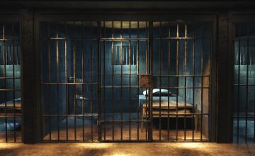 Închisoare secretă cu un crematoriu, descoperită în apropiere de Sankt Petersburg. S-au găsit resturi biologice | VIDEO