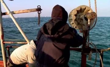 """Descoperire îngrozitoare, făcută de ecologişti în Delta Dunării. """"Îi măcelăresc"""""""