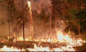 Incendii uriaşe, în toată Australia. Scene parcă desprinse din \