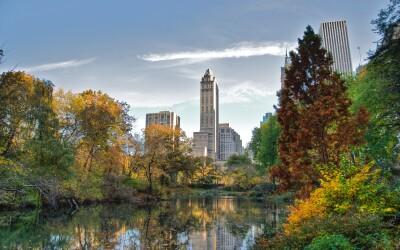 Central Park este cel mai filmat loc din lume: 10 lucruri pe care nu le stiai despre New York!