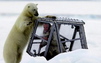 S-a pus in pielea pradei: Un cameraman a vrut sa afle cum este sa fii devorat de un urs polar. A filmat scene incredibile! VIDEO