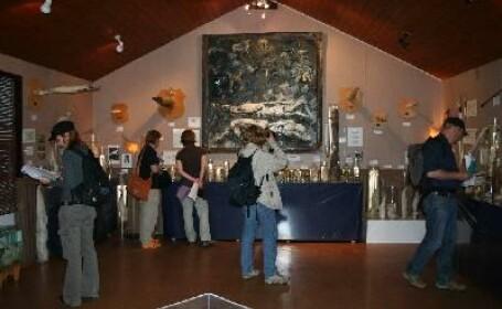 Muzeu Falologic