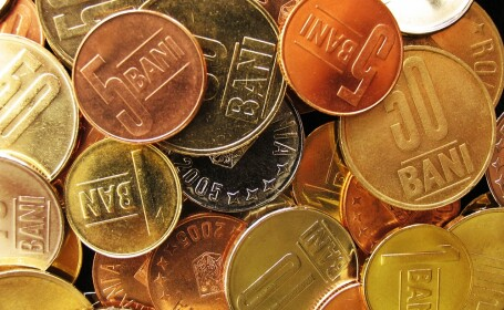 bani, lei, monede