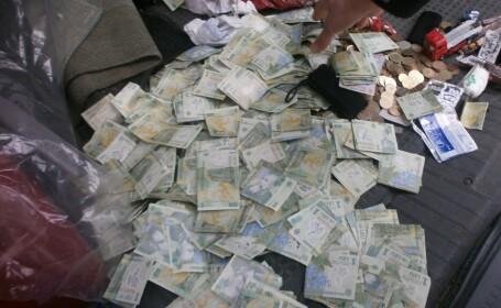 Pisica, Cersetor, bani, Timisoara