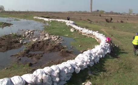 Situatia a devenit critica in Delta. Pericolul inundatiilor, dublat de pericolul poluarii chimice