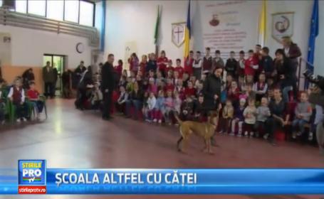 Demonstratii de dresaj canin la un liceu din Oradea, in saptamana \