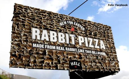 panou pizza iepuri