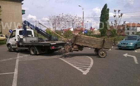caruta tractata Oradea