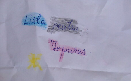 Lista pentru Iepuras