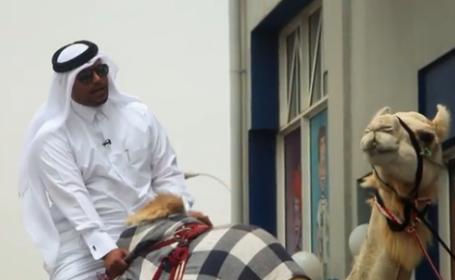 Moment amuzant in Qatar. Un comediant s-a dus la restaurant calare pe o camila