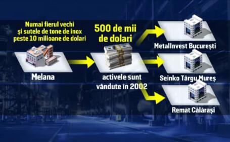 platforma Savinesti, privatizare