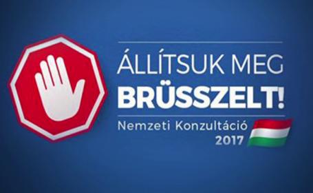 chestionar Ungaria