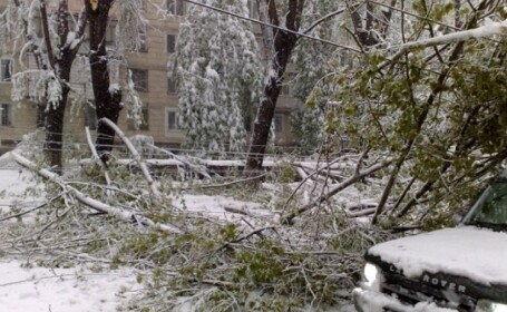 Presedintele Moldovei a mobilizat armata ca sa lupte impotriva zapezilor. 4.000 de copaci au cazut doar in Chisinau