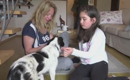 O noua forma de a ajuta animalele abandonate castiga teren in Romania. Ce presupune o familie foster