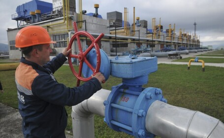 Gazele ruseşti vor putea ajunge în România în această iarnă. Anunţul făcut de ţara vecină