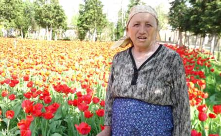 """O bunică din Maramureș a adunat mii de lalele în gospodăria ei. """"Am vrut o mică Olanda"""""""