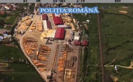 Operaţiune în Parcul Naţional Călimani: 900 de mc de lemn, confiscați şi amenzi uriaşe