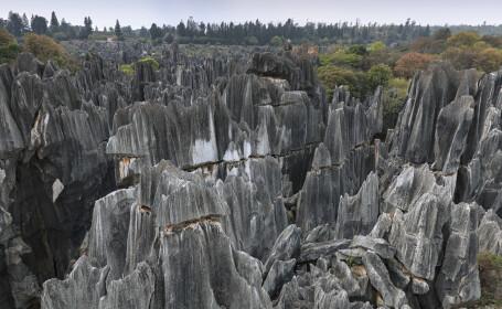 Cum arată Pădurea de Piatră - 5