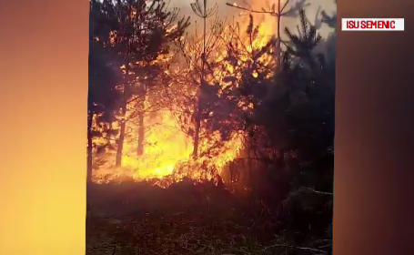 Dezastrul provocat de un incendiu în Caraș-Severin