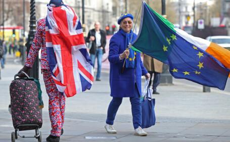 sustinatori Brexit si Remain