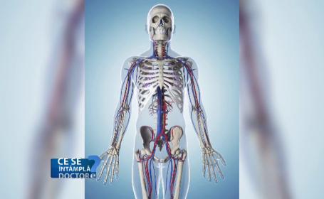 Cum putem preveni osteoporoza înainte de a ajunge la menopauză