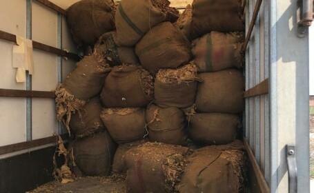 Zeci de tone de tutun, confiscare de polițiști. Au fost deschise 862 de dosare penale. FOTO