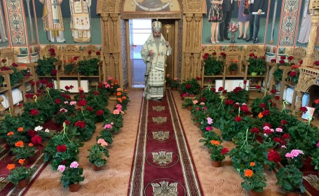 """Gest emoționant. Ghivece într-o biserică din Vaslui, în timpul slujbei de Florii: """"Fiecare credincios este o floare"""""""
